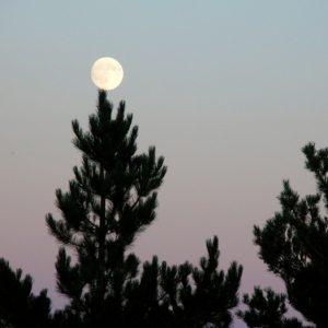 """pin crochet """"jouant au bilboquet"""" avec la lune"""