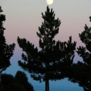 """pin crochet """"jouant au bilboquet"""" avec la pleine lune"""
