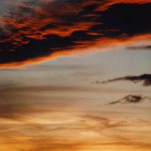 Crépuscule - En garrigue... (Pic Saint-Loup)